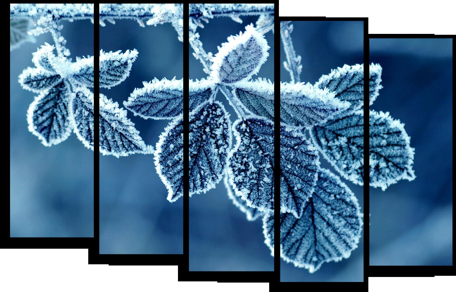 """Природа Модульная картина """"Иней на листьях"""" М499.png"""