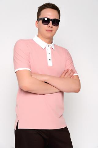 """Поло(deni).. Очень интересное сочетание цвета и качества. Мужские футболки """"поло"""" для тебя!"""