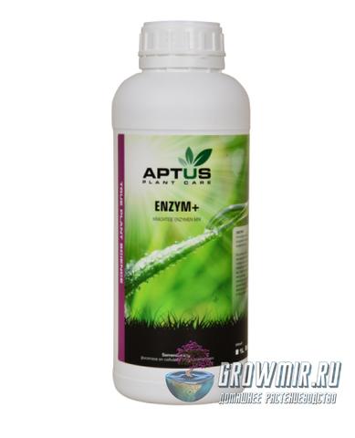 Aptus Enzyme+ 1 л
