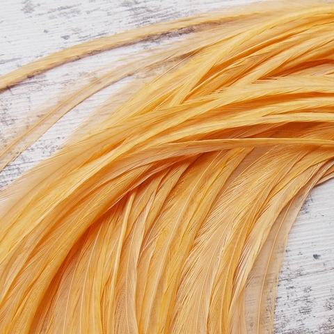 Перо петуха (10 шт) - Golden Straw