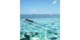 Монопод-поплавок SP Section Pole Set в воде
