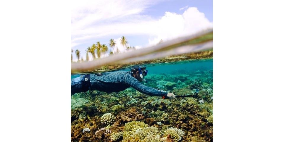 Монопод-поплавок SP Section Pole Set под водой