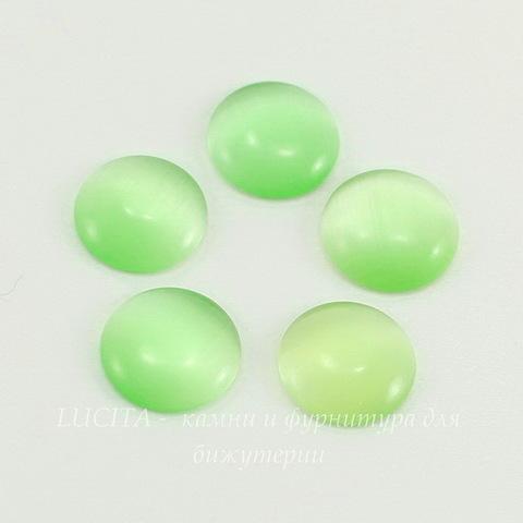 Кабошон круглый Кошачий глаз зеленый, 10 мм ()