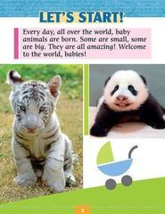 Baby animals (explore our world). Reader. Книга для чтения