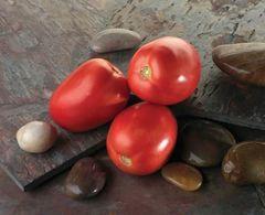Диаболик F1 семена томата детерминантного (Sakata / Саката)