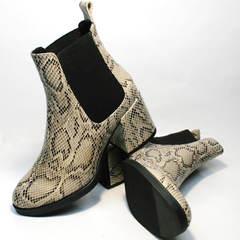 Кожаные ботинки женские осень весна Kluchini 13065 k465 Snake.