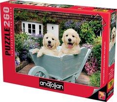 Puzzle Bahçıvan Köpekler.Puppies in a Wheelbarrow 260 pcs