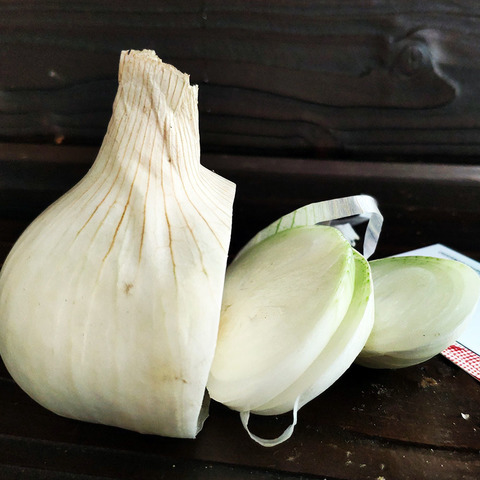 Фотография Лук белый салатный / 1 кг купить в магазине Афлора