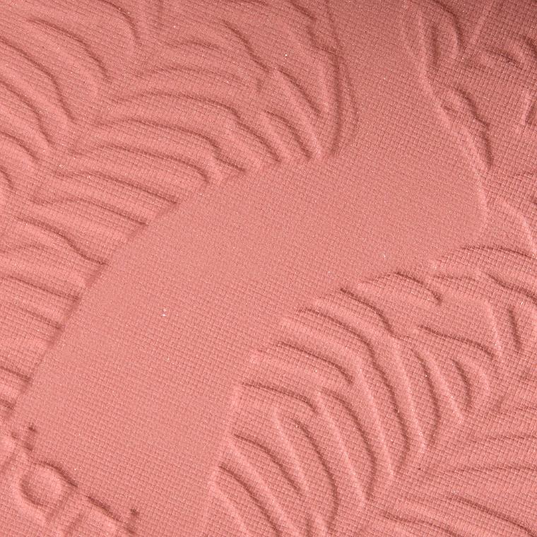 Румяна Amazonian Clay