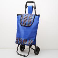Тележка багажная ручная 20 кг (сумка), 50 кг (каркас) DT-22 синяя с красным