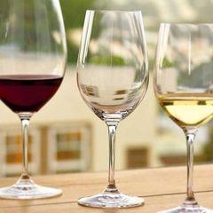 Набор бокалов для вина Riedel, Riesling Grand Cru, 4 шт, 400 мл, фото 3