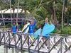 Русский серф-тур на Филиппины осенью'16