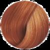 Wella Professional Color Touch 8/43 (Боярышник) - Тонирующая краска для волос