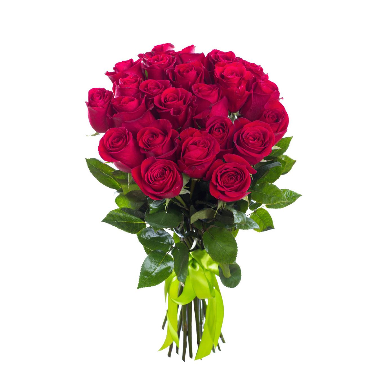25 малиновых роз (60 см)