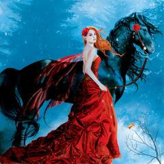 Картина раскраска по номерам 40x50 Дама в красном с лошадью