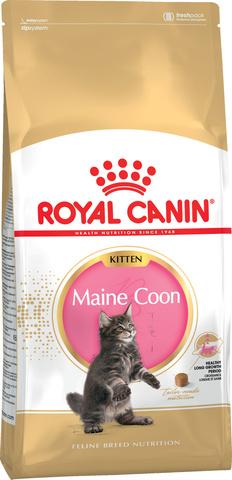Royal Canin Kitten Maine Coon корм для котят породы мейн-кун 400г