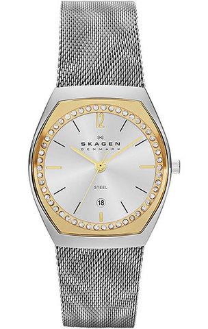 Купить Наручные часы Skagen SKW2050 по доступной цене