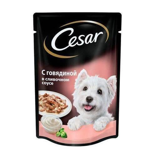 Cesar пауч для собак говядина в сливочном соусе 100г