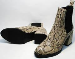 Осенние ботинки женские на каблуке Kluchini 13065 k465 Snake.