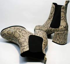 Ботинки женские на широком каблуке Kluchini 13065 k465 Snake.