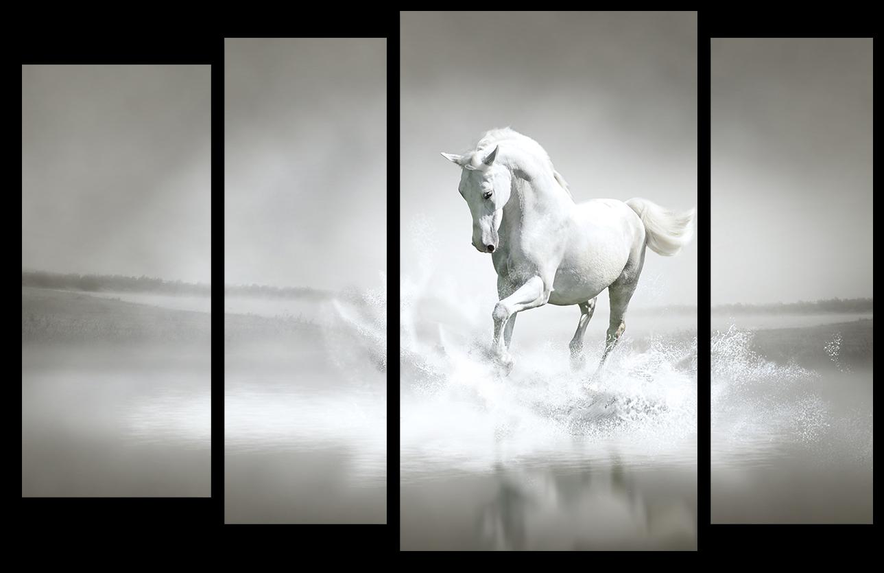 """Животные Модульная картина """"Белый жеребец"""" М992.png"""