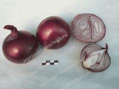 Прометей семена лука репчатого (Гавриш)