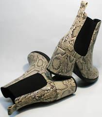 Осенние ботинки на толстом каблуке Kluchini 13065 k465 Snake.