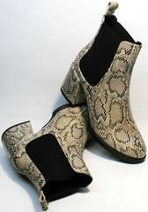 Ботинки на среднем каблуке женские демисезонные Kluchini 13065 k465 Snake.
