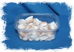 Аномалодискус Скюаносус в упаковке на вес