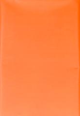 Колорит. Клеенка ПВХ 50х70 см без окантовки и резинки, оранжевая