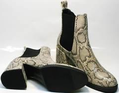Женские ботинки без шнурков осенне весенние Kluchini 13065 k465 Snake.