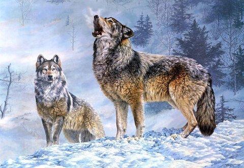 Алмазная Мозаика 30x40 Волки в зимнем лесу (арт. S2760)