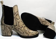 Элегантные женские ботинки челси Kluchini 13065 k465 Snake.