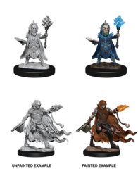 Pathfinder Deep Cuts Unpainted Miniatures - Evil Wizards