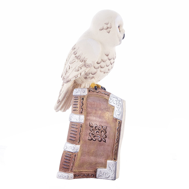 Полярная сова на книге