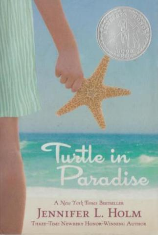 Turtles in Paradise