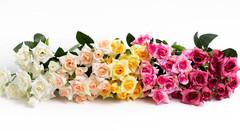 Мелкие розы.