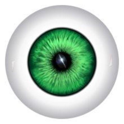 Глаза для кукол, 12 мм