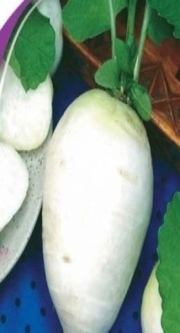 Семена Редька Зимняя круглая белая б/п