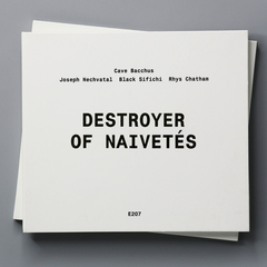 Destroyer of Naivetés