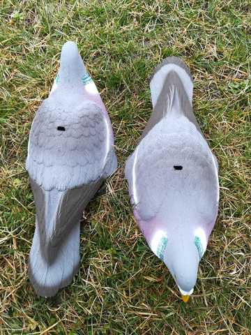Сколупки голубей вяхиря Sport plast