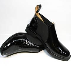 Модные полуботинки женские черные Ari Andano 721-2 Black Snake.
