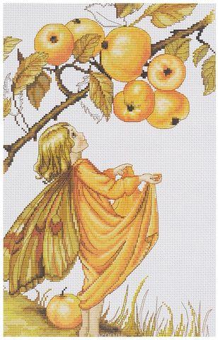 B297 Дикая яблоня