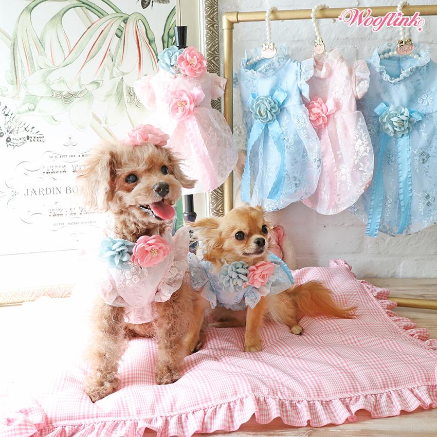 гламурная одежда для собак