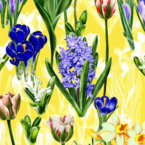 весенние цветы на желтом фоне
