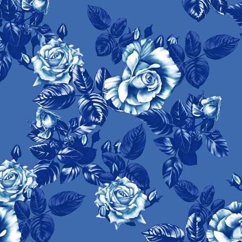 розы_08_белые ночи