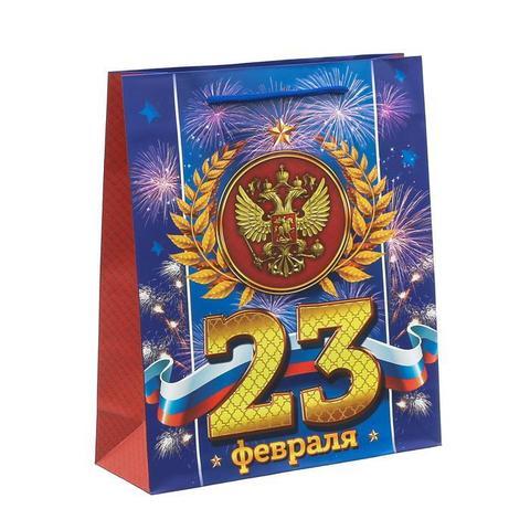 Пакет «Праздник настоящего мужества» 23×27×8см
