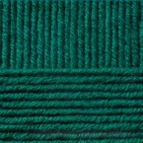 Купить Пряжа Пехорка Перспективная Код цвета 573-Т.изумруд | Интернет-магазин пряжи «Пряха»