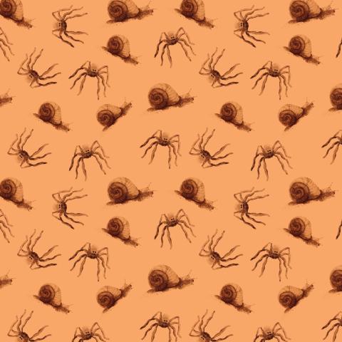 пауки и улитки на бежевом фоне, осенний узор