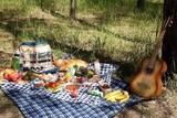 Покрывало для пикника Camping World Comforter Blanket